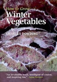 winter-vegetables